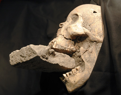 Vampire Skeleton Found! (click to read the actual article)